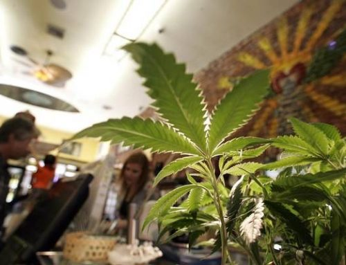 Mexican tourism secretary says legal pot idea was 'personal