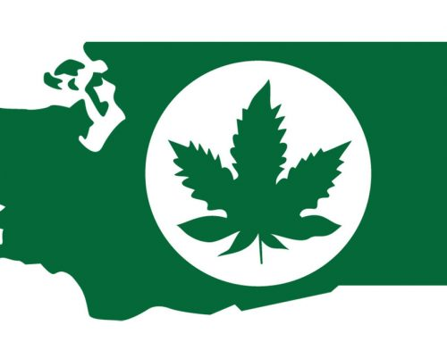 WSLCB new tracking system (Leaf Data) hobbling Washington marijuana businesses