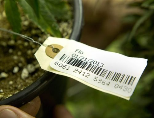 WSLCB Change of ASV for Marijuana Traceability