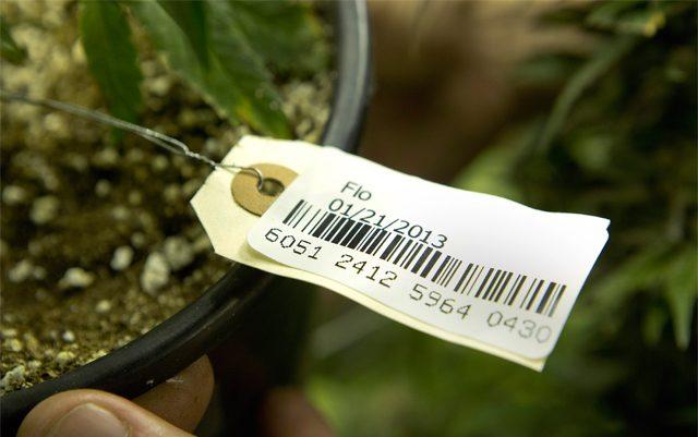 WSLCB Change of ASV for Marijuana Traceability