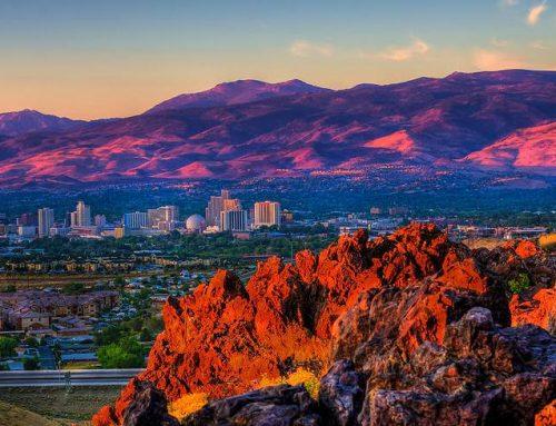 Nevada Retail Marijuana Distributor Insufficiency Determination