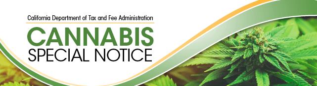 Medical Marijuana Business Setup Consultants California - RMMCnewsfeed